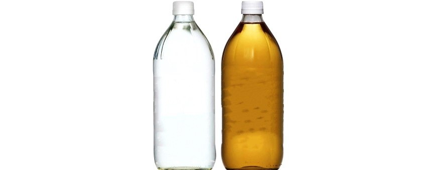 Vinegar And Cider