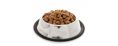 Dog And Puppy Food